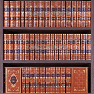 Библиотека зарубежной классики в 100 томах. Книги в кожаном переплете
